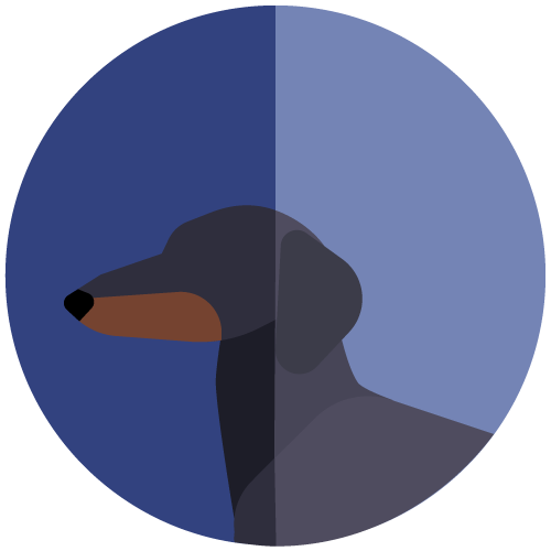 avatar-dachshund