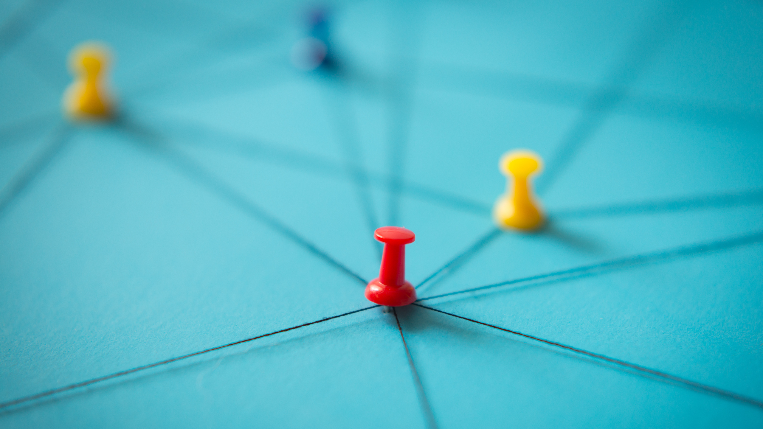 network-strategy