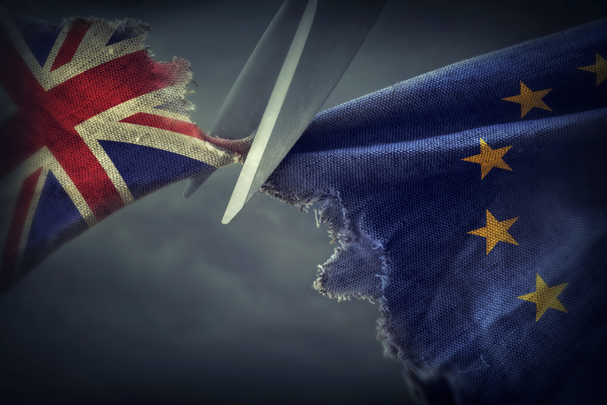 How should FMCG suppliers respond to Brexit now?